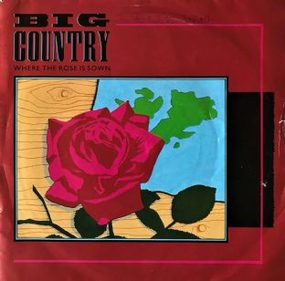 "Big Country - Where The Rose Is Sown (7"") (VG/G)"